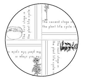 Plant Life Cycle Wheel
