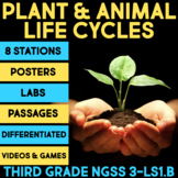 Plant Life Cycle and Animal Life Cycle Science Stations BUNDLE