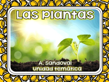 Plant Life Cycle in Spanish