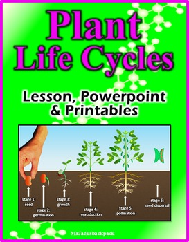 Plant Life Cycles - Lesson, Powerpoint & Printables