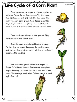Plant Life Cycles Paired Text Volume 2