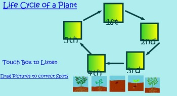 Plant Life Cycles unit (Smart Board Doc & Slide Shows & Review & quiz)