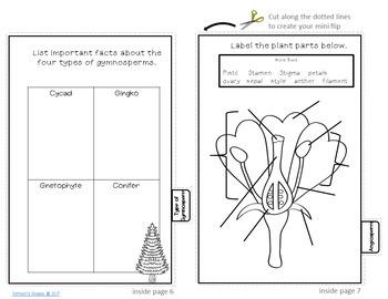 Plant Life Flipbook Review Activity