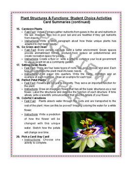 Plant Life Unit: 20 STEM Activities for Fast Finishers (No Prep)