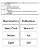 Plant Life Vocabulary Game