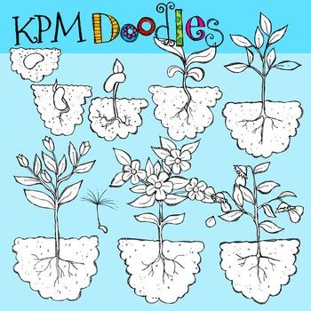 Plant Life black line Clip Art