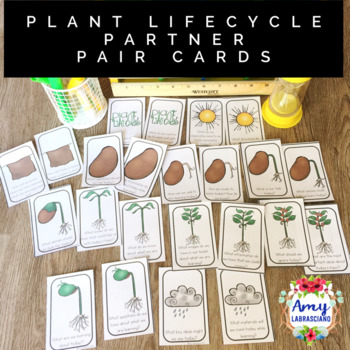 Plant LifeCycle Partner Pair Cards