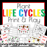 Plant Lifecycle {Print & Play Pack}