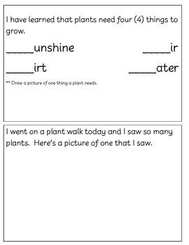 Plant Log Book & Activities