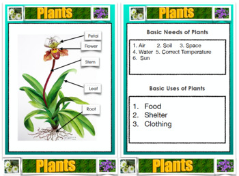 Plant Mini Booklet For Students PDF - Science, Plant Parts, etc. A GREAT PRICE!!