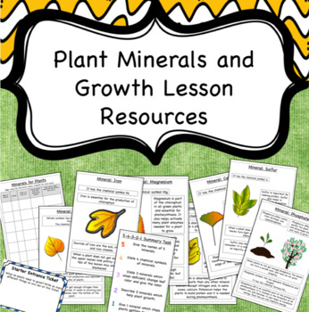 Plant Minerals and Growth Lesson Activities