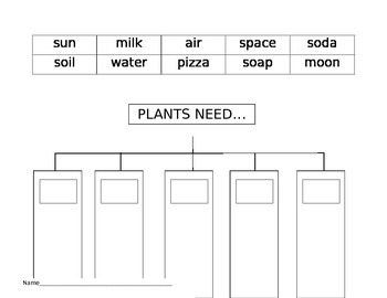 Plant Needs Anchor Chart