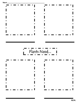 Plant Needs Graphic Organizer