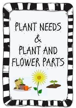 Plant Needs & Plant & Flower Parts - Activities