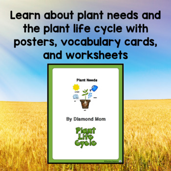 Plant Needs and the Plant Life Cycle