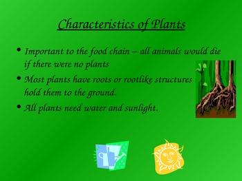Plant Notes for 6th Grade South Carolina Science
