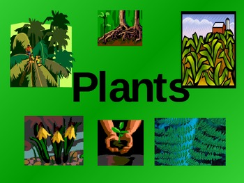 Plant Notes for 6th Grade South Carolina Science