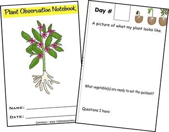 Plant Observation Book - Preschool, Kindergarten, 1st, 2nd, 3rd grade