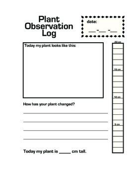 Plant Observation Daily Log