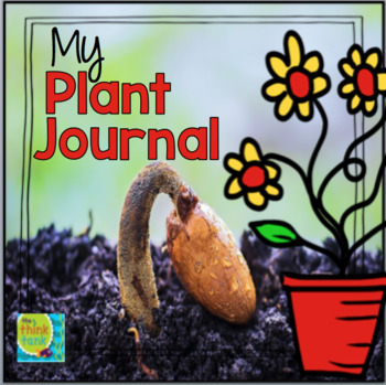 My Plant Journal: The Life Cycle of a Plant
