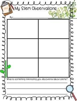 Plant Observation Science Notebook