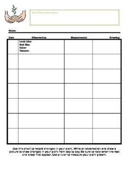 Plant Observation Sheet
