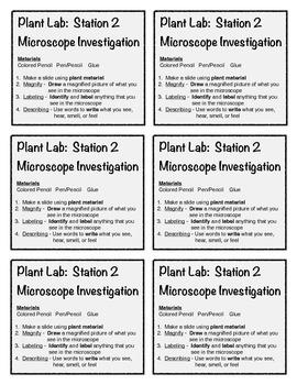 Plant Observation Stations