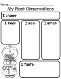 Plant Observation Worksheet