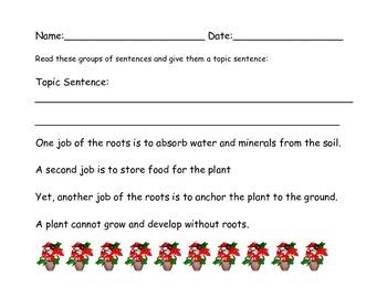 Plant Paragraphs