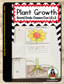 Plant Part Science Lesson Interactive Notebook Common Core LS2.A