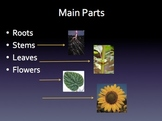 Plant Part and their Functions
