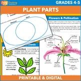 Exploring Biology Unit: Plant Parts for Big Kids