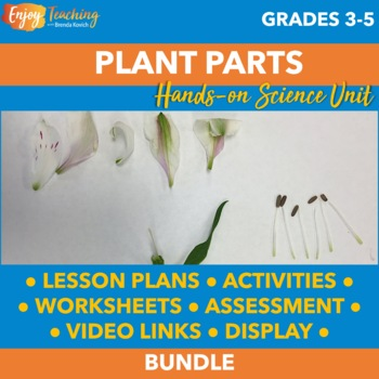 Exploring Biology: Plant Parts for Big Kids