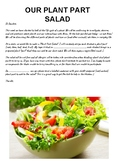Plant Parts - A Salad Activity