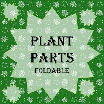 Plant Parts Foldable