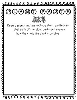 Drawing and Labeling Plant Parts *Freebie!*