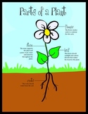 Plant Parts, Life Cycle & Photosynthesis - game, handouts