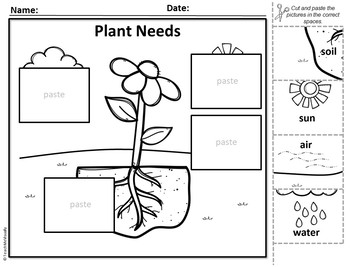 Plant Parts and Needs - Puzzle Parts & Labeling Activity (Flower)