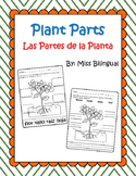 Plant Parts / Partes de una Planta - Dual Language English & Spanish