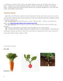 Plant Parts People Eat