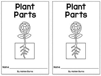 Plant Parts Emergent Reader