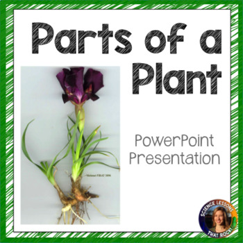 Plant Parts SMART notebook presentation