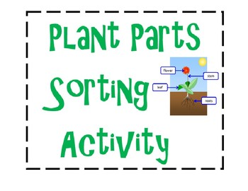 Plant Parts Sorting Cards