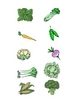 Plant Parts: Sorting Vegetables