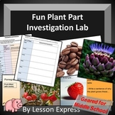 Plant Parts Investigation Lab -- Middle School Biology