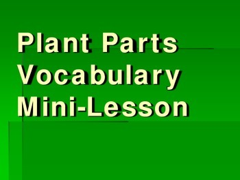 Plant Parts Vocabulary Interactive Mini-Lesson