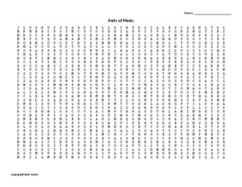 Plant Parts Vocabulary Word Search for an Agriculture Plant Science Course