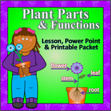 Plant Parts and Functions - Lesson, Powerpoint & Printable Packet