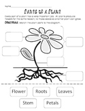 Plant Parts and Jobs Cut and Paste-  3 lesson activities, centers or stations