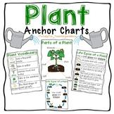 Plant Parts and Life Cycle Anchor Charts